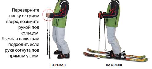 как подобрать лыжные палки